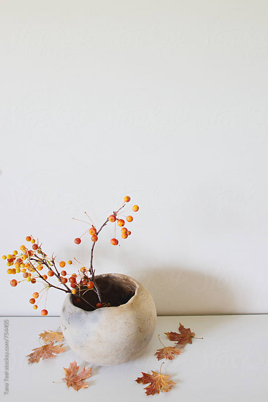 berry branches decorate a handmade thrown clay pot on a shelf by Tana Teel for Stocksy United