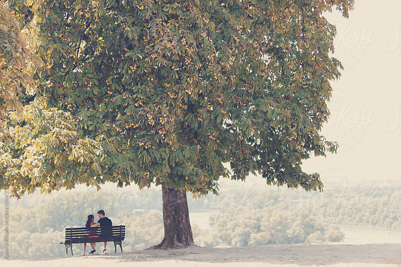 Young couple sitting on bench under the big tree  by Jovana Rikalo for Stocksy United