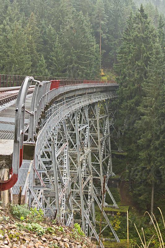 Steel skeleton bridge over a valleyin a fir forest by Melanie Kintz for Stocksy United