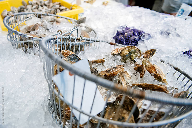 Fresh oysters and clams on ice at a fish market by Cara Dolan for Stocksy United