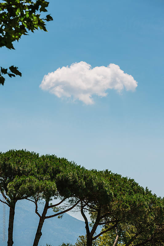 Small Cloud over Pine Trees by Simon DesRochers for Stocksy United