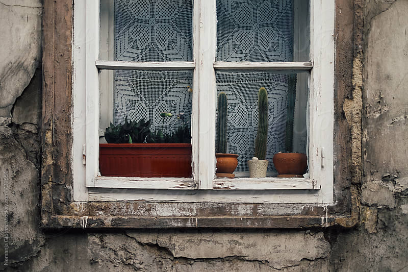 Old Window in Petrovaradin, Serbia by Nemanja Glumac for Stocksy United
