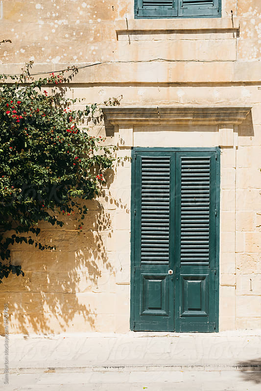 Maltese door by Sam Burton for Stocksy United