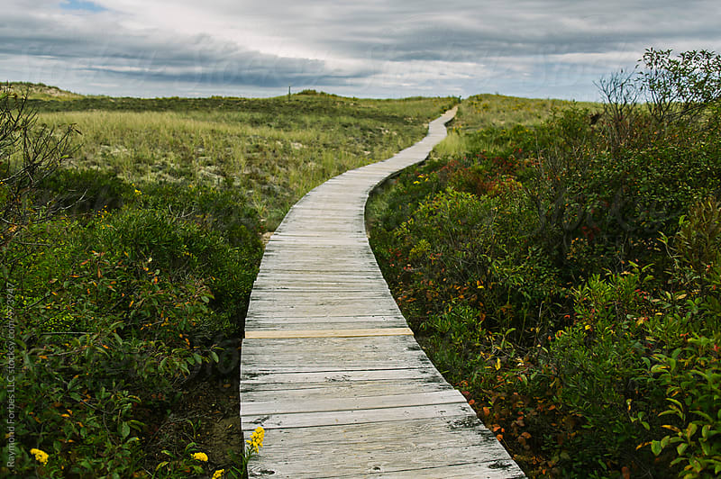 Boardwalk in Autumn by Raymond Forbes LLC for Stocksy United
