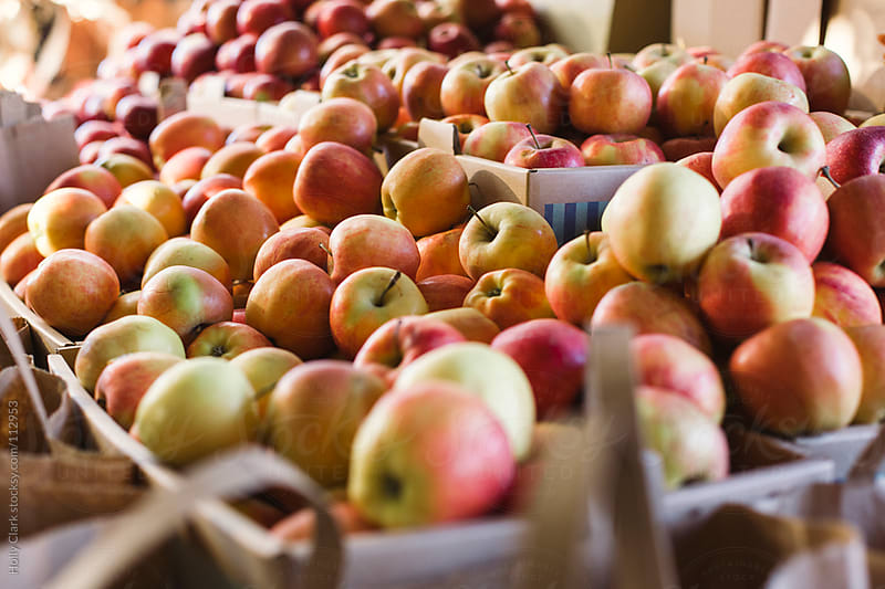 Apples for sale at a farmer's market. by Holly Clark for Stocksy United