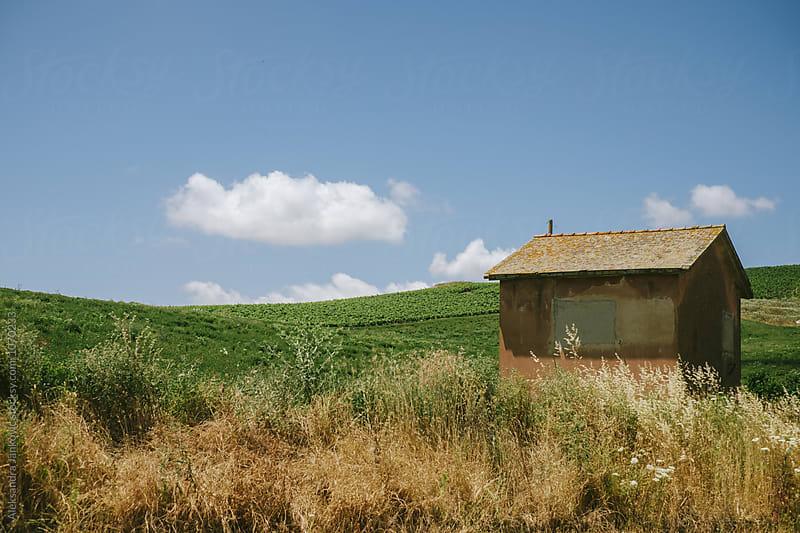 Sicilian Countryside by Aleksandra Jankovic for Stocksy United
