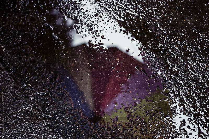 Umbrella reflection in the puddle by Jovana Rikalo for Stocksy United