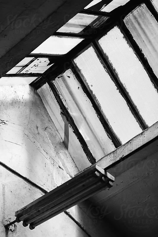 roof windows by MEM Studio for Stocksy United