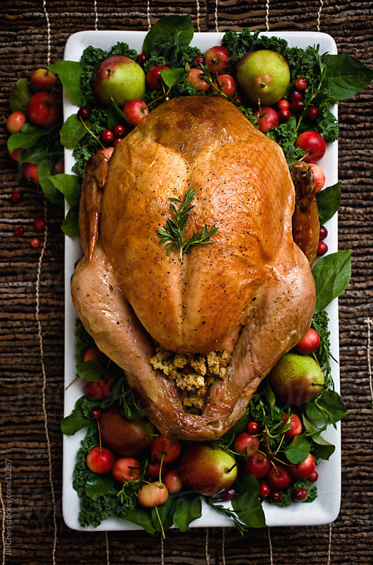 Dressed Turkey by Jill Chen for Stocksy United