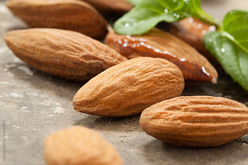 Almond Seeds by Lumina for Stocksy United