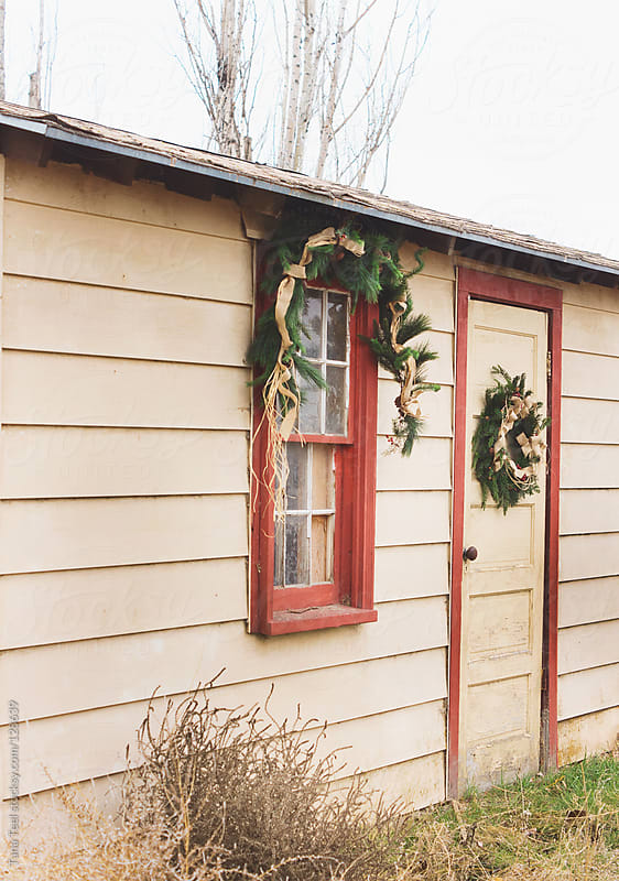 An old shed decorated with rustic evergreen for the holiday season by Tana Teel for Stocksy United