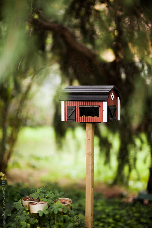 Barn shaped birdhouse and feeder on a pole under conifer in garden by Laura Stolfi for Stocksy United