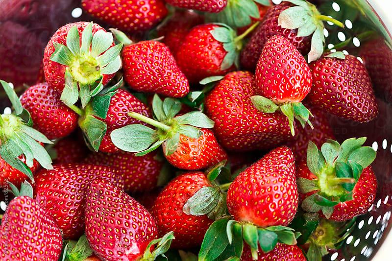 fresh winter strawberries by Gillian Vann for Stocksy United