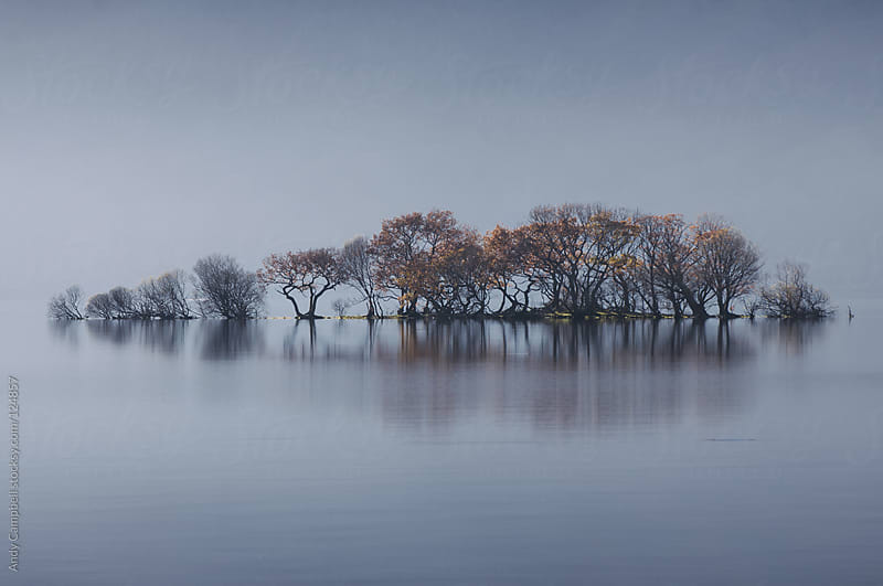 A tiny island of trees sits on a misty lake by Andy Campbell for Stocksy United