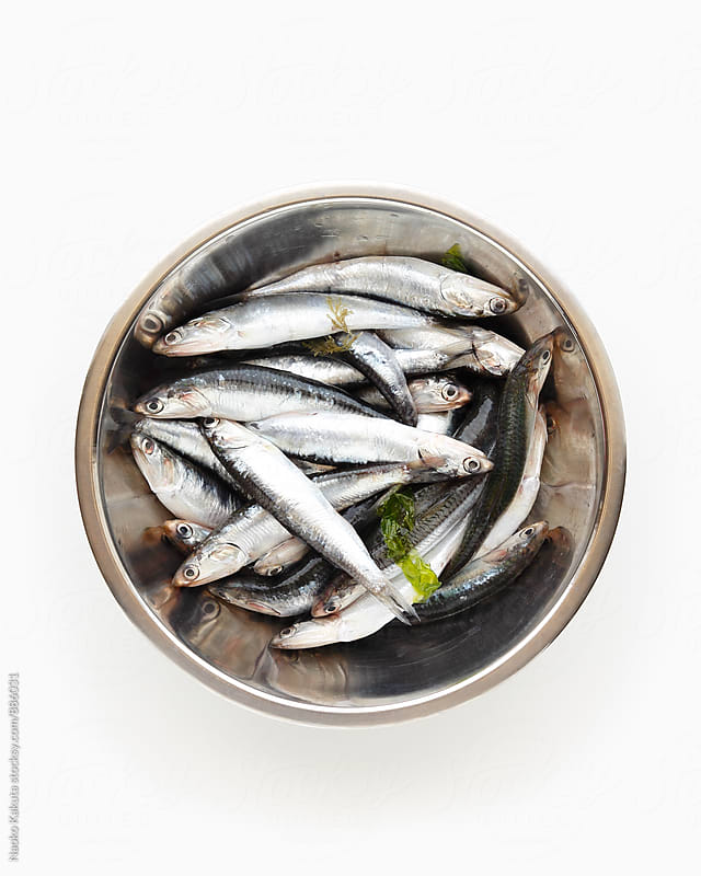 fresh anchovies in a stainless bowl by Naoko Kakuta for Stocksy United
