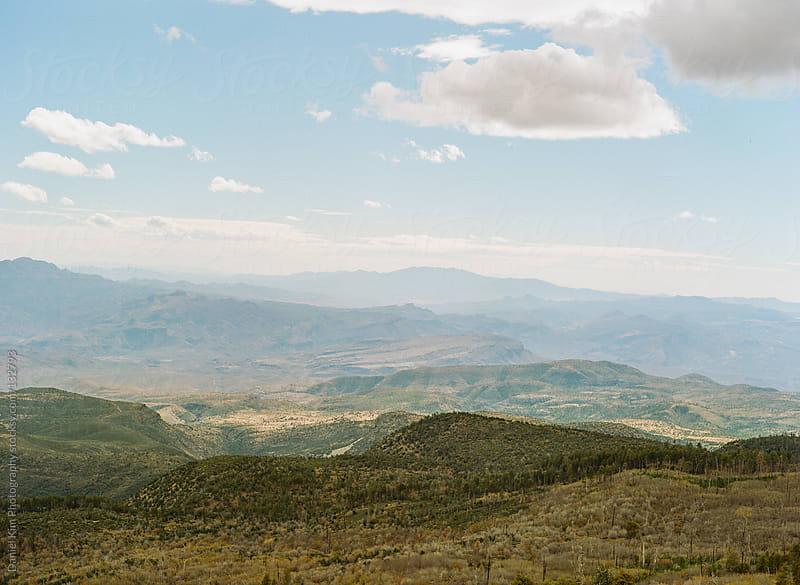 Arizona Desert Landscape by Daniel Kim Photography for Stocksy United