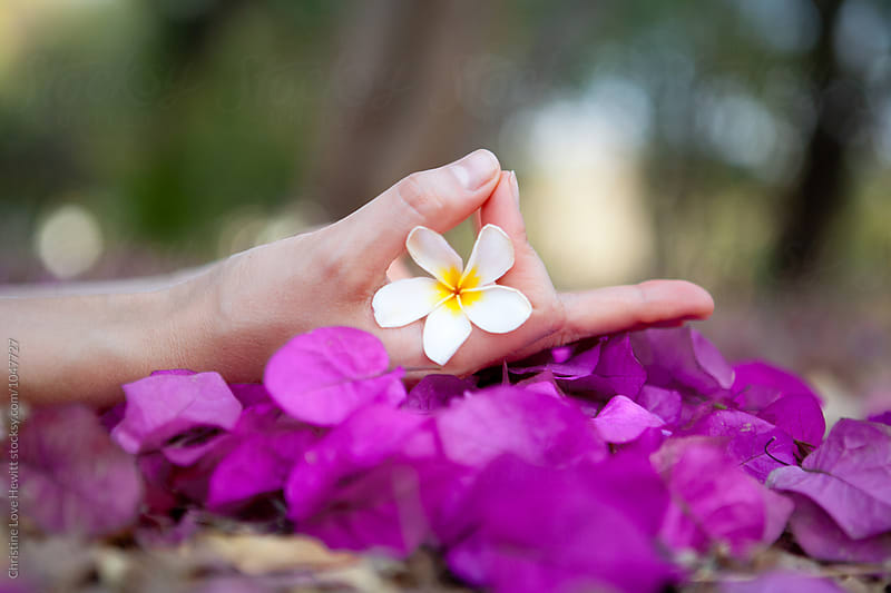 Yoga hand mudra with frangipani and bougainvillea. by Christine Love Hewitt for Stocksy United