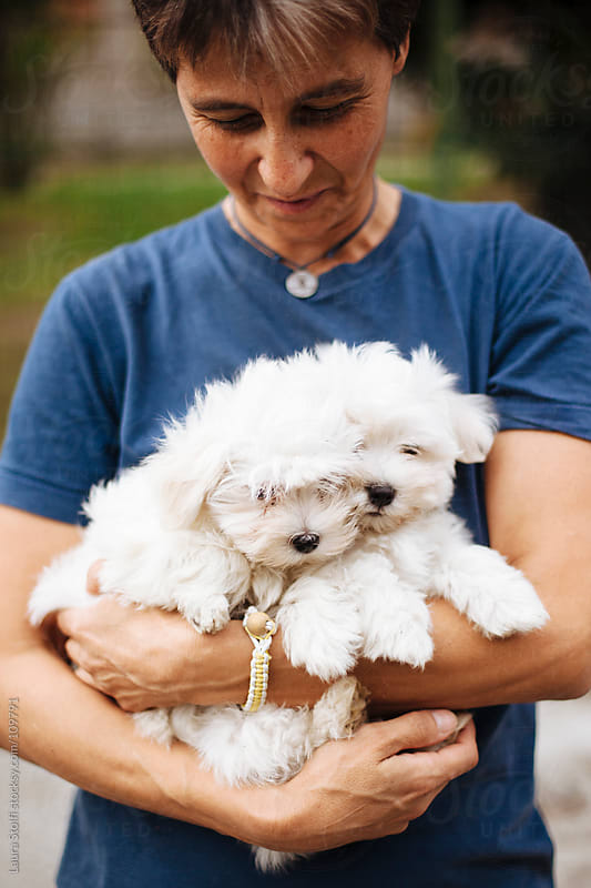 Woman looks with tender eye at two white puppies she holds in her arms by Laura Stolfi for Stocksy United