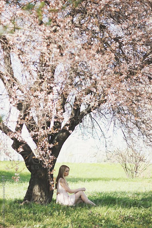 Young woman sitting under a big cherry blossom tree by Jovana Rikalo for Stocksy United