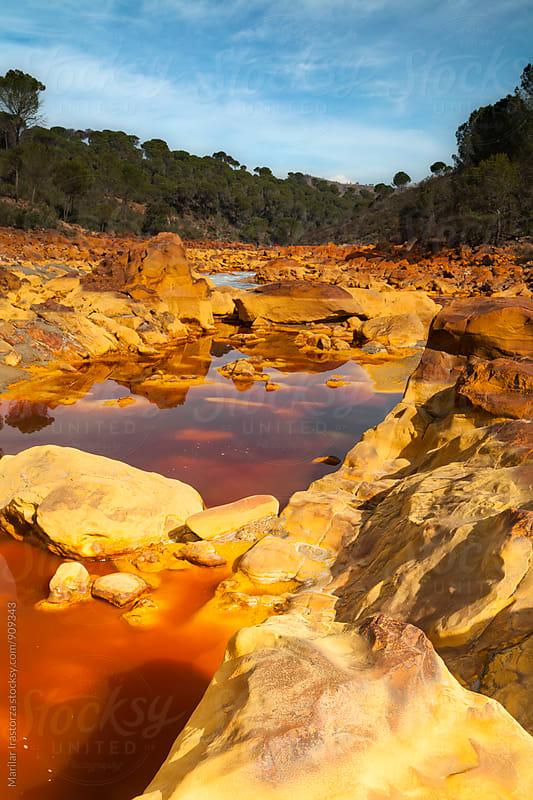 Red River by Marilar Irastorza for Stocksy United