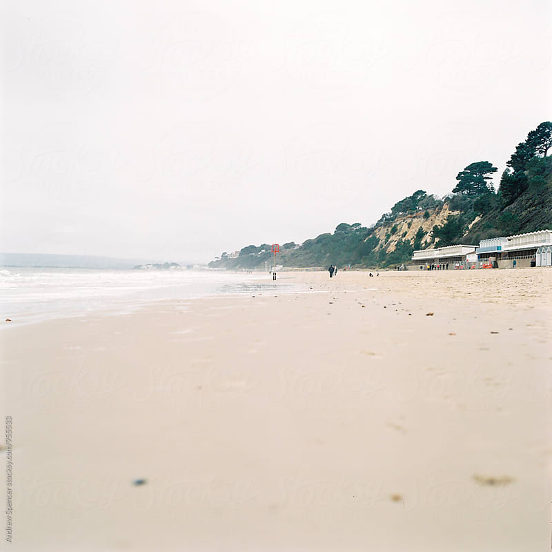 Calm Beach by Andrew Spencer for Stocksy United