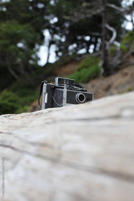 Vintage Camera Sitting On A Log by Carey Haider for Stocksy United