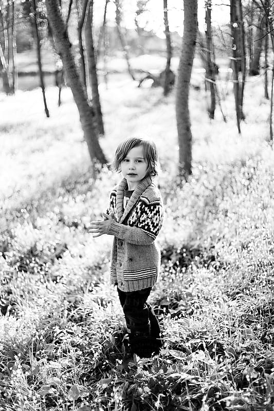 Portrait of young boy in woodland. by Darren Muir for Stocksy United