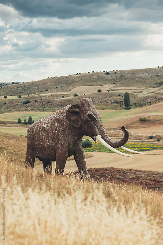 monument of the mammoth in the field by Javier Pardina for Stocksy United