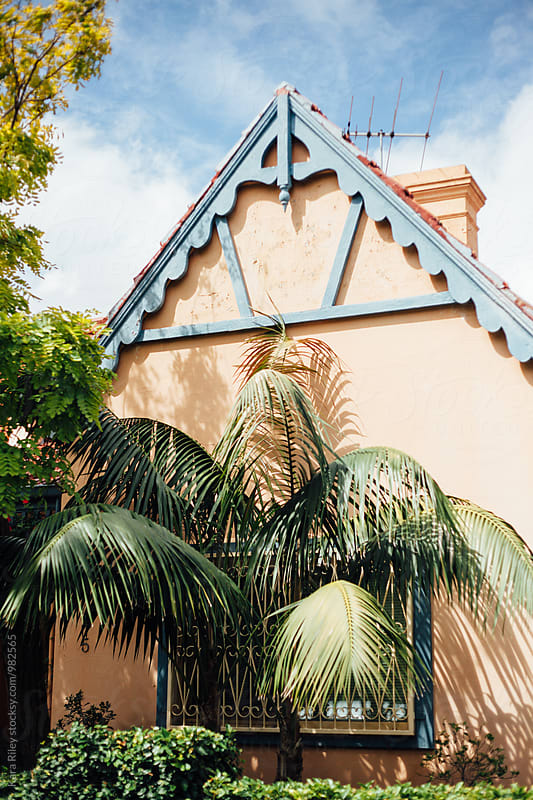Cute House and Palm Tree by Kara Riley for Stocksy United