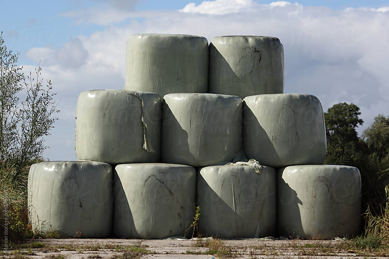 Cow fodder bales on the dutch countryside by Marcel for Stocksy United