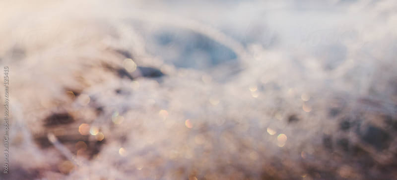 Blurry winter panoramic background with sparkles by Rob and Julia Campbell for Stocksy United