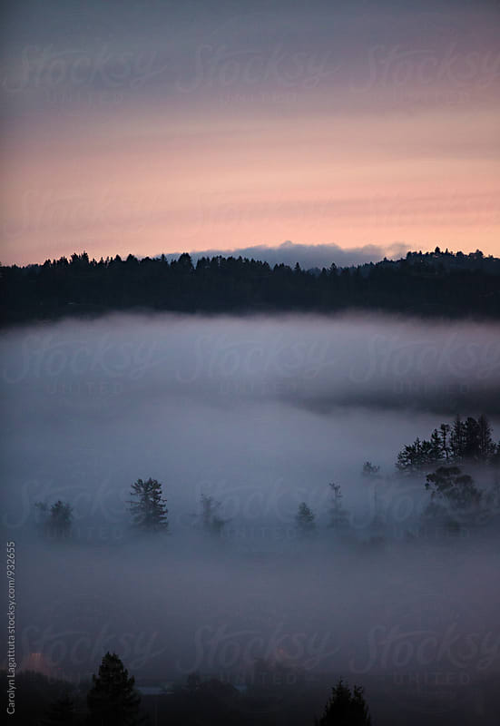 Fog covering a small town valley with pink skies at sunrise by Carolyn Lagattuta for Stocksy United