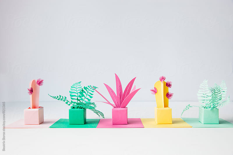 Cardboard plants on white surface and background by Beatrix Boros for Stocksy United