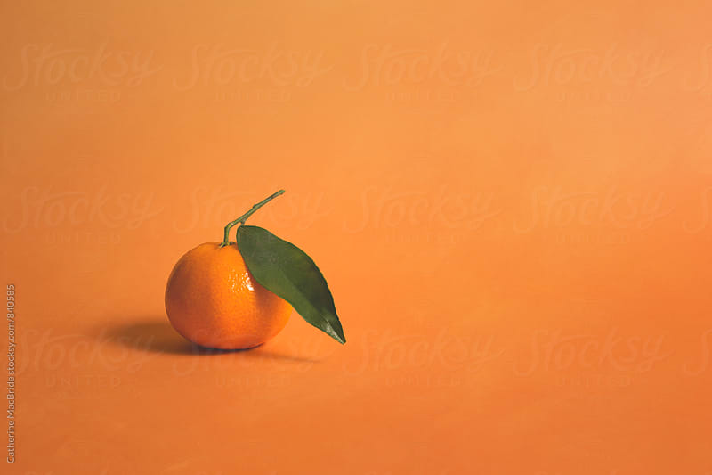 Clementine on orange... by Catherine MacBride for Stocksy United