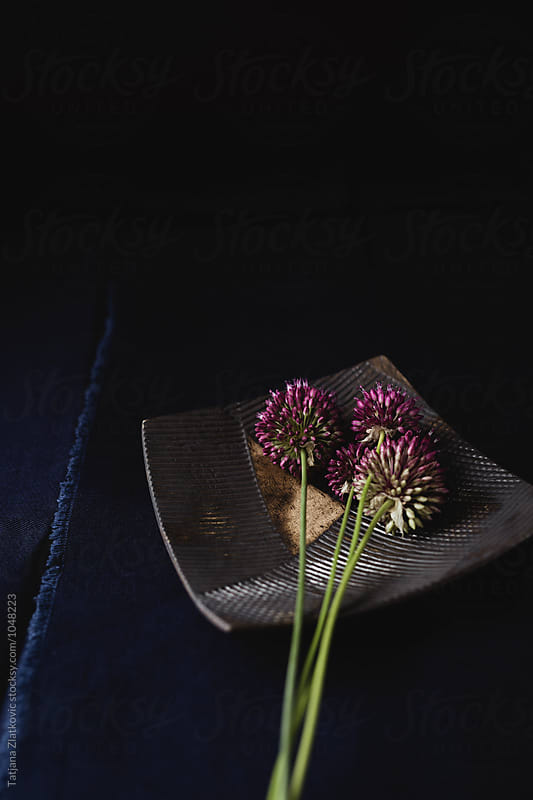 Flowers by Tatjana Ristanic for Stocksy United