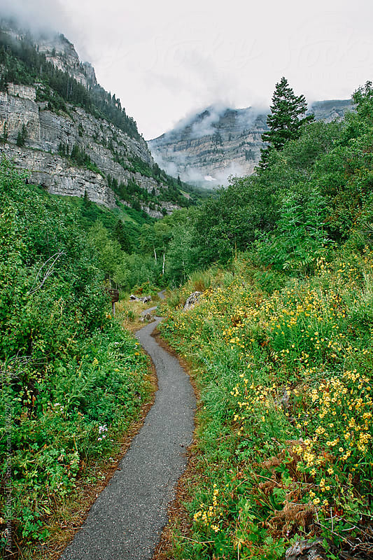 Hiking Trail in Wasatch Mountain Range by Raymond Forbes LLC for Stocksy United