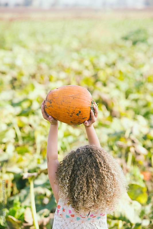 Pumpkins: Girl Holds Pumpkin Over Head by Sean Locke for Stocksy United