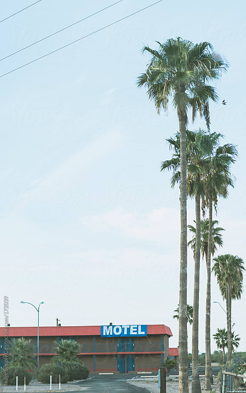 motel and palm trees by Image Supply Co for Stocksy United