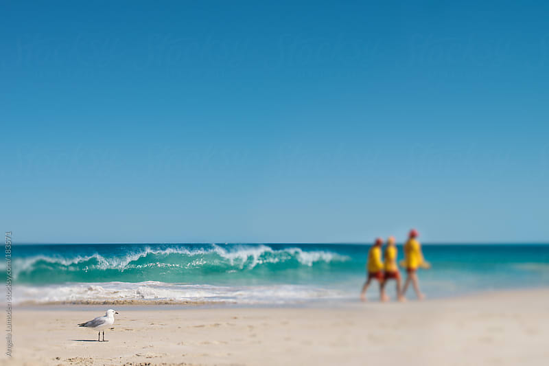 Three Australian surf lifesavers patrol the beach by Angela Lumsden for Stocksy United