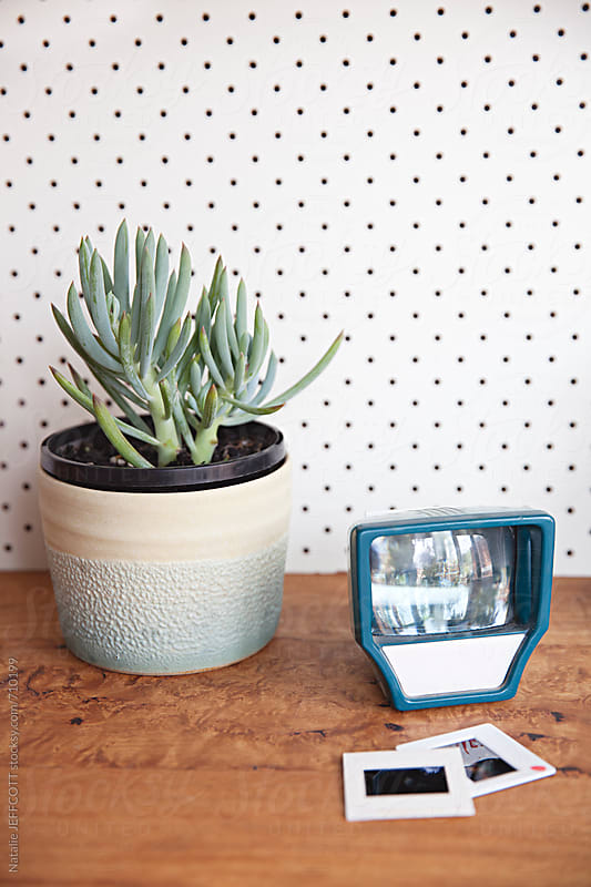 Pegboard / Perforated board with close up of desk with succulent  by Natalie JEFFCOTT for Stocksy United