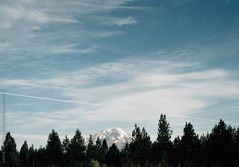 Mountain peaking through trees by Isaiah & Taylor Photography for Stocksy United