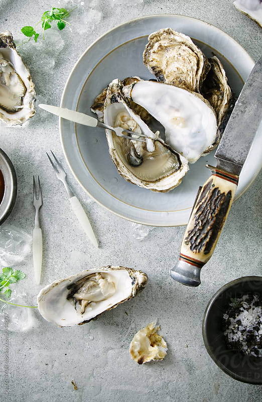 Shucked oysters on a table. by Darren Muir for Stocksy United