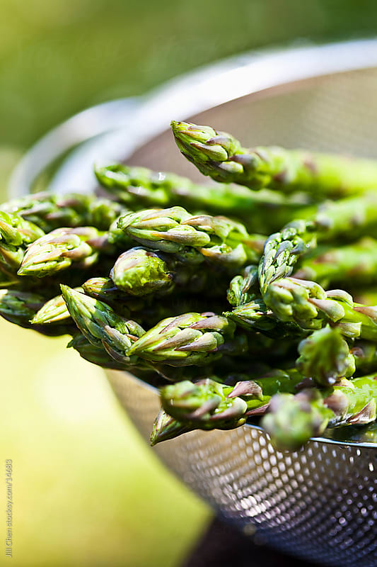 Fresh Asparagus by Jill Chen for Stocksy United