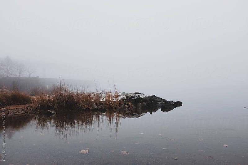 A fog covered riverbank in Maryland during the winter month of December by Greg Schmigel for Stocksy United
