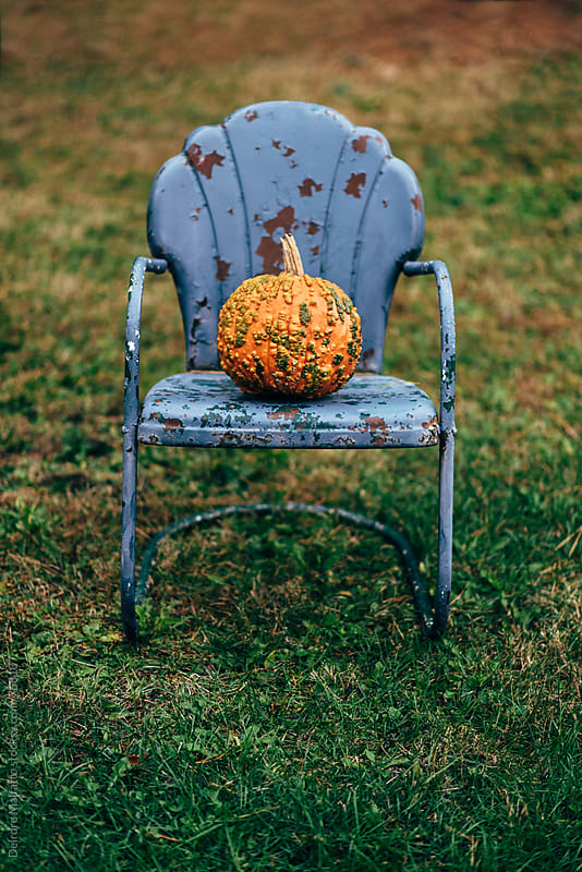 warty pumpkin on an old purple chair by Deirdre Malfatto for Stocksy United