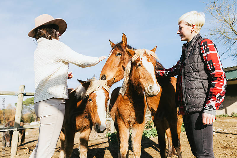 Women farmers caressing ponies on farm. by BONNINSTUDIO for Stocksy United
