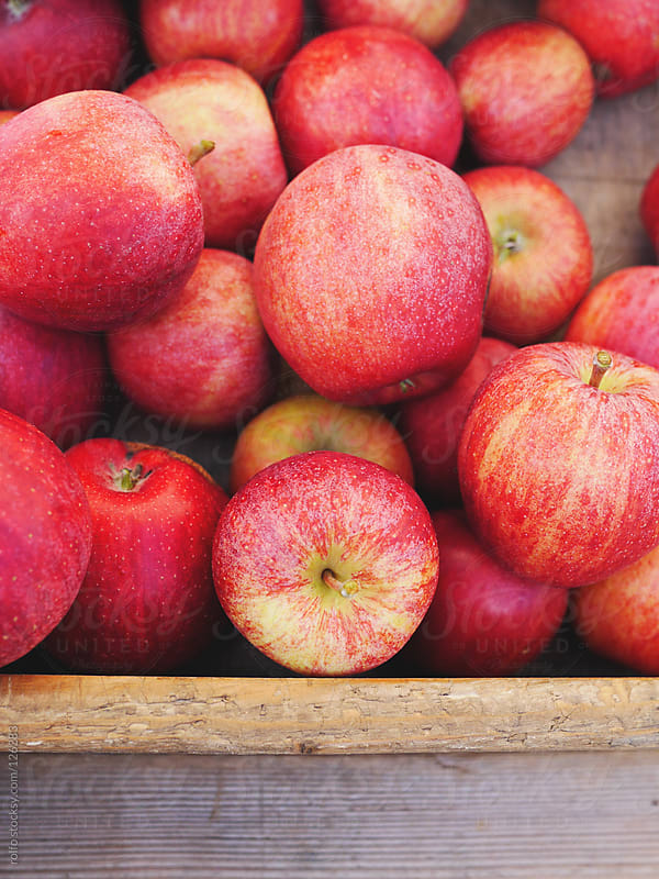 Delicious juicy red organic apples by rolfo for Stocksy United