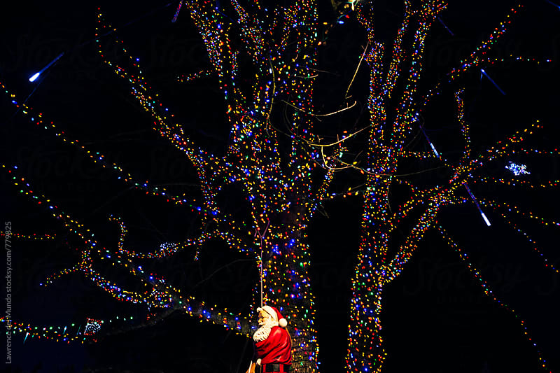 Christmas lights and Santa Claus on a tree.  by Lawrence del Mundo for Stocksy United