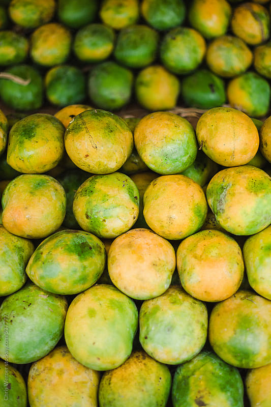 Mangoes by Chris Werner for Stocksy United