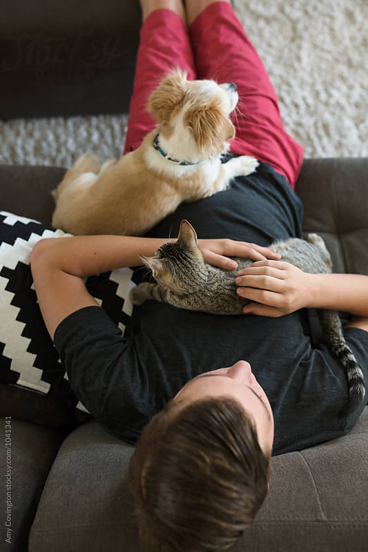 From above a young man relaxing on a couch with his pets by Amy Covington for Stocksy United